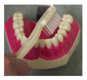 toothbrush3